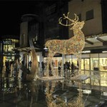 Christmas Lights Switch On at Westwood Cross