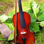 Summer Afternoon Music at Walmer Castle & Gardens – 4th to 25th August 2018