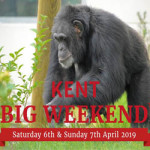 Kent Big Weekend at Wingham Wildlife Park – Saturday 6th April 2019