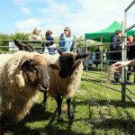 The English Festival 2019 at Riverside Country Park – Saturday 20th April